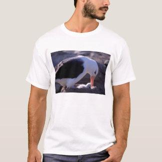 Antarctica, Sub-Antarctic Islands, South 4 T-Shirt