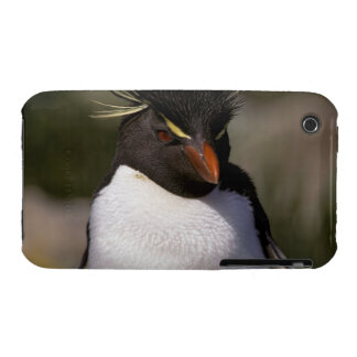 Antarctica, Sub-Antarctic Islands, South 5 iPhone 3 Case-Mate Case