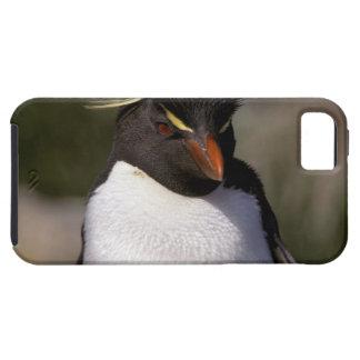 Antarctica, Sub-Antarctic Islands, South 5 iPhone SE/5/5s Case