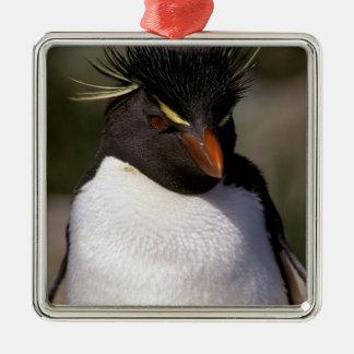 Antarctica, Sub-Antarctic Islands, South 5 Metal Ornament
