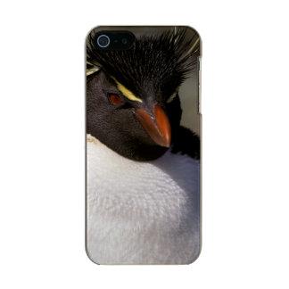 Antarctica, Sub-Antarctic Islands, South 5 Metallic iPhone SE/5/5s Case