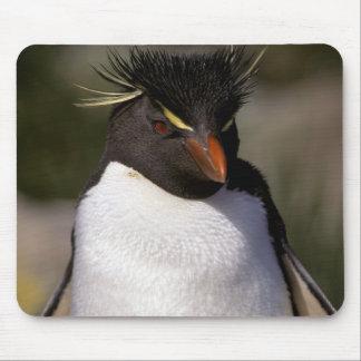 Antarctica, Sub-Antarctic Islands, South 5 Mouse Pad