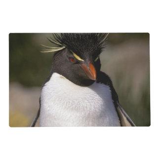 Antarctica, Sub-Antarctic Islands, South 5 Placemat