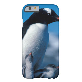 Antarctica, Sub-Antarctic Islands, South Barely There iPhone 6 Case