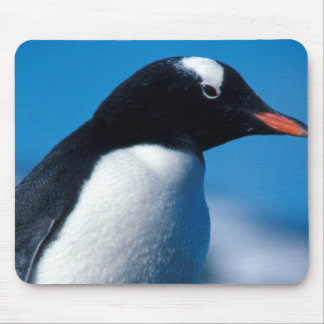 Antarctica, Sub-Antarctic Islands, South Mouse Pad