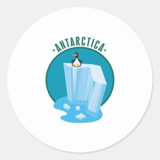 antartica penguin design sticker