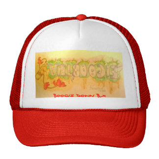 antboogie boogie down bx hats