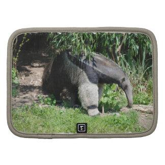 Anteater gigante que busca el folio de la cartera  organizadores
