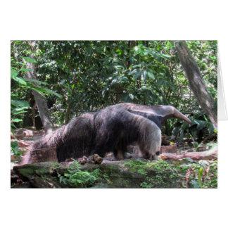 Anteater Greeting Card