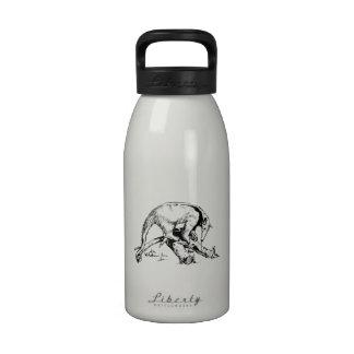 Anteaters Botella De Agua
