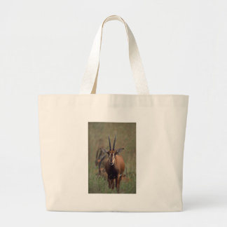Antelope Canvas Bag