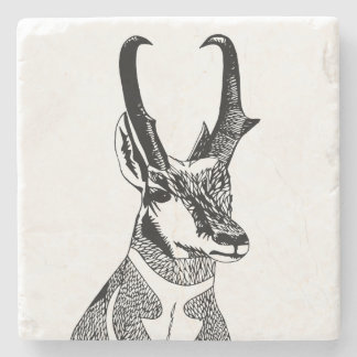 Antelope Coaster