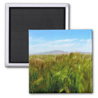 Antelope Island & Field of Green Magnet