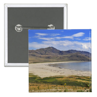 Antelope Island State Park, Great Salt Lake, Buttons