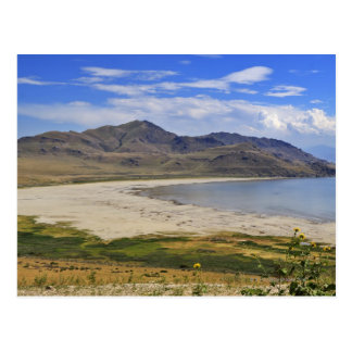 Antelope Island State Park, Great Salt Lake, Postcard