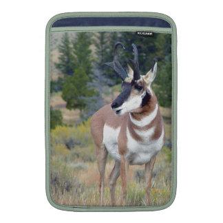 Antelope Macbook Air Sleeve