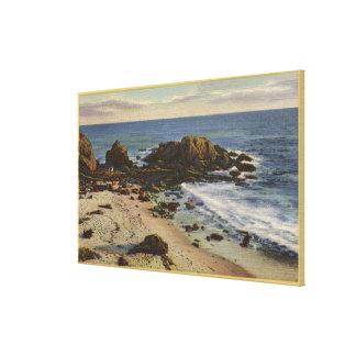 Antena de la costa rocosa impresiones de lienzo