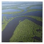 Antena del archipiélago de Anavilhanas, inundada Azulejo Cuadrado Grande