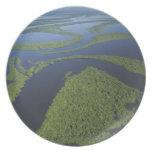 Antena del archipiélago de Anavilhanas, inundada Plato