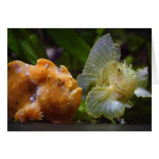 Antennarius commerson & Taenianotus triacanthus Greeting Card