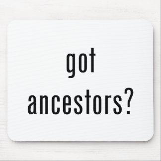 ¿antepasados conseguidos tapetes de ratones
