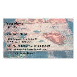 Antes de la restauración del humedal tarjetas de visita
