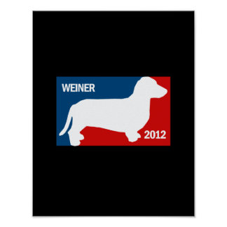 ANTHONY WEINER 2012 POSTERS