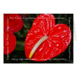 Anthurium Congratulations Best Wishes Greeting Card
