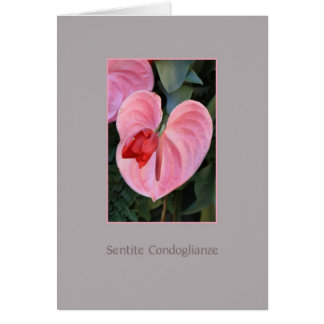 Anthurium sympathy card italian