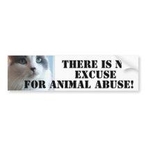 Anti Animal Abuse Sad Kitty Bumper Sticker