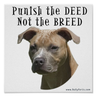 Anti-BSL Punish the Deed, Not the Breed Poster