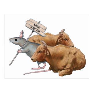 Anti-Bullying: Bulls, Mouse: Bullying NOT Cool Postcard