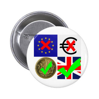 Anti EU & Euro, Pro UK & Pound Sterling (1) Pins