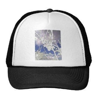 anti-glamorous cherry trucker hat