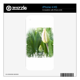anti-glamorous tulips decal for the iPhone 4S
