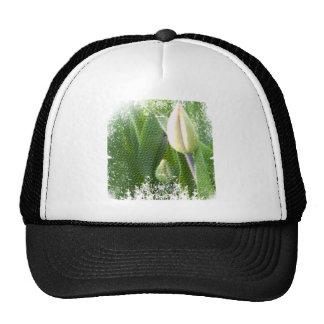 anti-glamorous tulips trucker hat