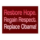 Anti Obama 2012 Election Postcards