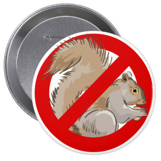 Anti-Squirrel 4 Inch Round Button
