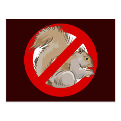 Anti-Squirrel Postcard