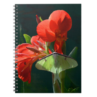 """""""Anticipation of the Night"""" - Luna Moth Painting Notebook"""