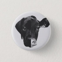 Antiespecismo Pinback Button