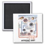 Antigenic Shift (Virus Transmission) Fridge Magnet