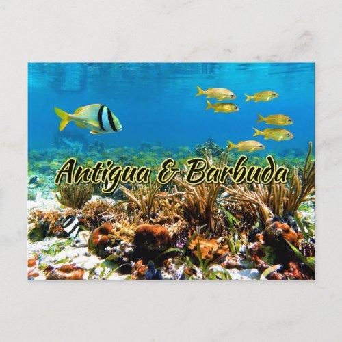 Antigua and Barbuda coral reef Postcard
