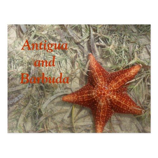 Antigua and Barbuda Starfish Postcard
