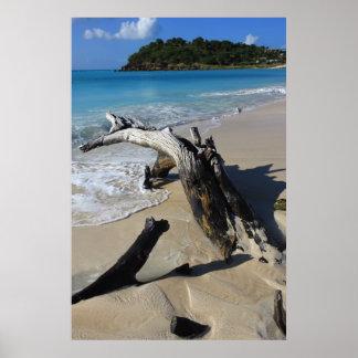 Antigua beach Poster