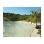 Antiguan Beach Beautiful Tropical Landscape Canvas Print