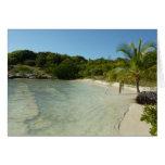 Antiguan Beach Beautiful Tropical Landscape Card