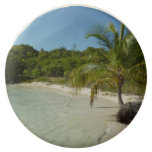 Antiguan Beach Beautiful Tropical Landscape Chocolate Covered Oreo