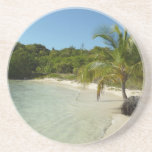 Antiguan Beach Beautiful Tropical Landscape Drink Coaster
