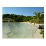 Antiguan Beach Beautiful Tropical Landscape Postcard